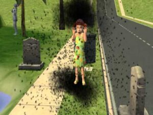 The Sims Death By Flies Top Ten Ways to Kill Your Sim #2