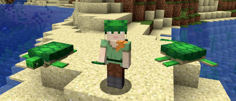 turtles in minecraft