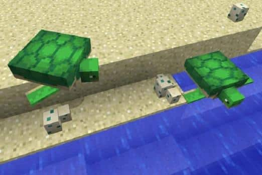how to breed turtles minecraft